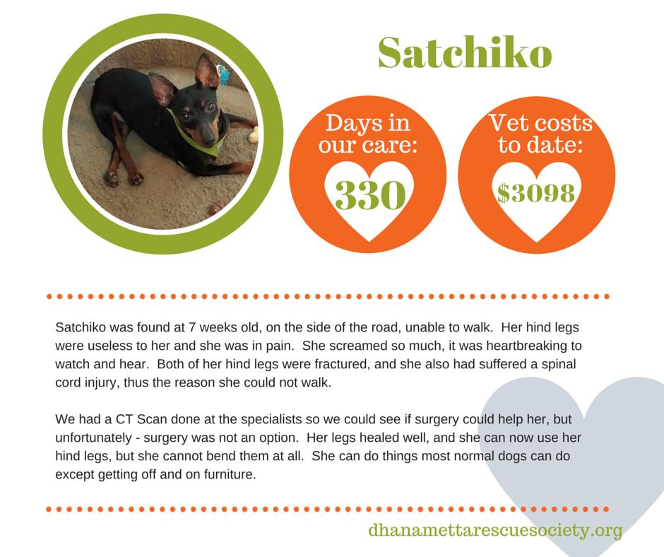 Satchiko